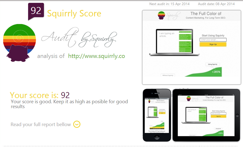 Squirrly Site Audit