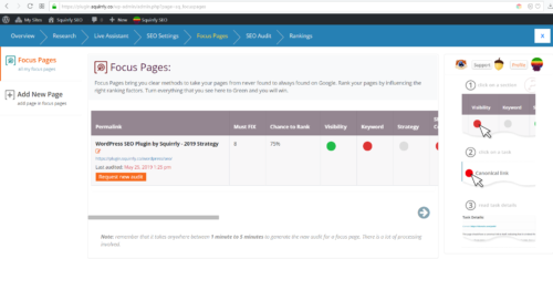 Focus Pages & Page Audits